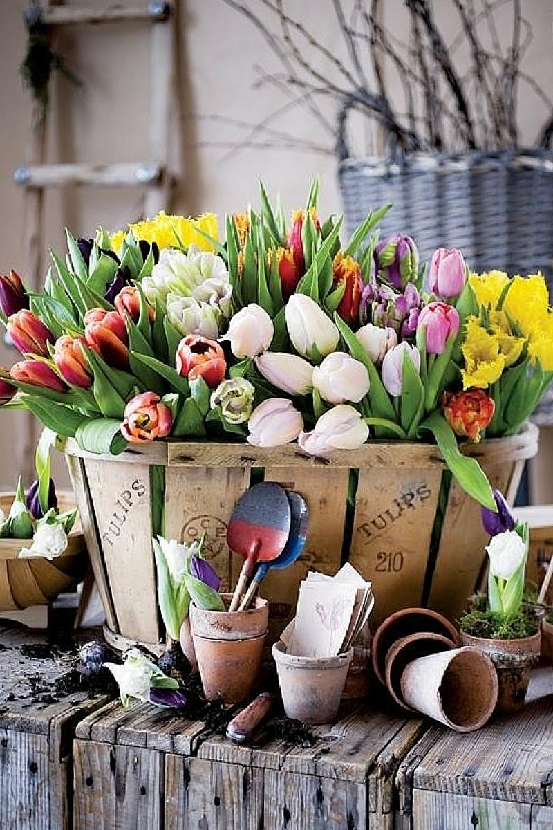 Matrimonio Tema Primavera : Nozze in primavera: matrimonio a tema tulipani